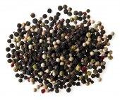 Spices on white — Stock Photo