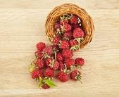 Raspberry on table — Stockfoto