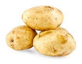 马铃薯隔离 — 图库照片