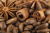 Grains of coffee and seasoning — Stock Photo