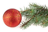 Ball for decoration and fir-tree — Stock Photo