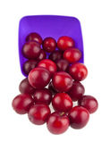Plums on plate — Stock Photo