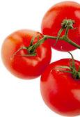 Tomatoes on white — Foto Stock