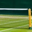 Lawn tennis court — Stock Photo #55146343