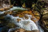 River — Stock Photo