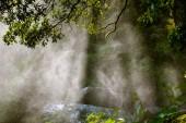 Backlit water spray — Stock Photo