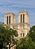 Notre-Dame cathedral in Paris — Stock Photo
