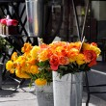 Flower shop — Stock Photo #65416829