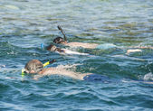 Snorkelers on tropical reef — Stock Photo