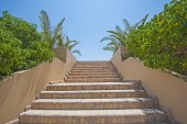 Stone steps in a tropical garden — Stock Photo