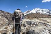 Bolivya'da trekking — Stok fotoğraf