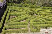 フランスの庭 — ストック写真