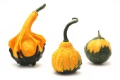 Decorative pumpkins (Cucurbita L.) — Stock Photo