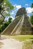 Tikal mayan ruins in guatemala — Stock Photo