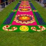 Постер, плакат: Easter carpets in antigua guatemala