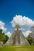 Tikal mayan ruins in guatemala — 图库照片