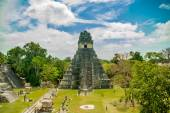 Tikal mayan ruins in guatemala — Stock Photo