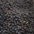 Pile of blueberries — Stock Photo #56285135