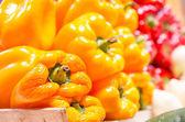 Yellow pepper capsicum — Stock Photo