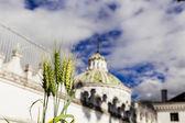 Dome of La Compania church in Quito Ecuador South America — Foto Stock