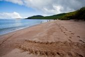 Beautiful landscape of a beach in the Galapagos Islands — Stock Photo