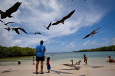 Unidentified tourists enjoying watching seabirds in Playa de los Alemanes, German beach, Galapagos Islands — Stock Photo