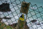 Safety warning sign on wooden post on cliff — Stock Photo