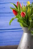 Färsk våren fång tulpaner i vintage rostig vas — Stockfoto