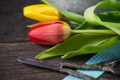 Fresh spring tulips on wooden rustic table — Stockfoto