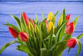 Bunch of fresh spring tulips — Zdjęcie stockowe