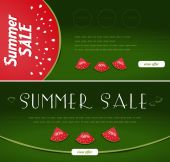Summer Sale banners, watermelon style — Stock Vector