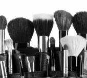 Professional make-up brush — Stock Photo