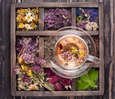 Dried Herbs and flowers  in vintage box and and herbal tea — Stock Photo