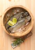 Raw trout fish with ice in wooden bowl — Stock Photo