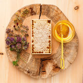 Honey comb, honey and dried herbs — Stock Photo