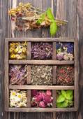 Dried Herbs and flowers in vintage box — Stock Photo