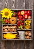 Autumn collage in vintage box.  Flowers sunflower, wild rose, walnuts and red apples. — Stock Photo