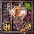 Tea with herbs, flowers and berries and dried herbs in a wooden box — Stock Photo #64243927