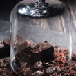 Chocolate and cocoa beans and glass Cloche — Stock Photo #72194469