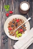 Chocolate granola and fresh berries — Stock Photo