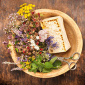 Dried and fresh herbs and flowers and herbal tea. Herbal medicine — Stock Photo