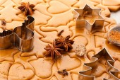 Christmas gingerbread dough, spices and baking cutters — Stock Photo