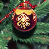 Decoration ball on Christmas tree — Stock Photo