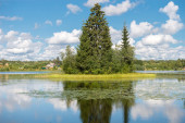 Forest Lake with a spruce on the island and with a reflection in — Photo