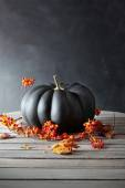 Black colored pumpkin with berries and leaves on table — Stockfoto
