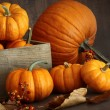 Small pumpkins with wooden box — Stock Photo #56189459