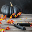 Black colored pumpkin with berries and scissors — Foto Stock #56189477