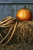 Large pumpkin with rope on hay  — Stock Photo