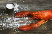 Cooked lobster with coarse salt on wood — Stock Photo