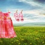 Постер, плакат: Dress and sandals on clothesline in fields of dandelions